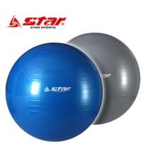 스타 - 짐볼 65cm +[EB200]펌프